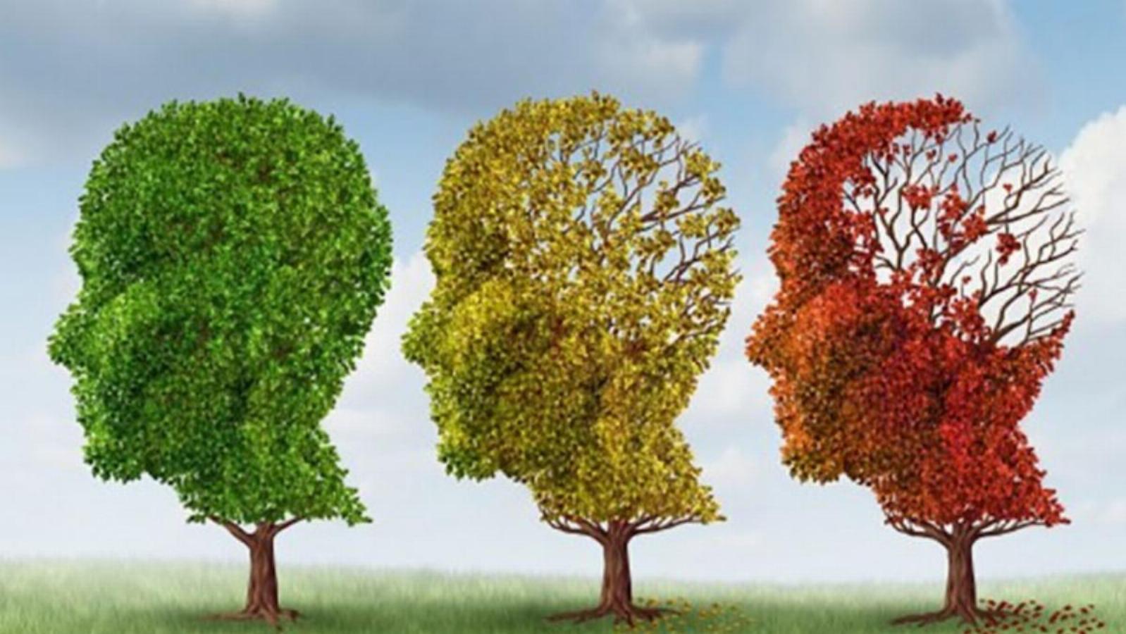 چگونه بخوریم تا دچار آلزایمر نشویم؟