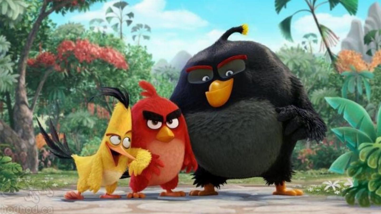 پرندگان خشمگین در صدر اخبار سینمایی لانه کرده اند