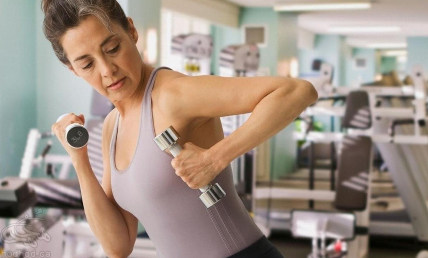 آموزش بدن سازی و تناسب اندام (بخش نخست)