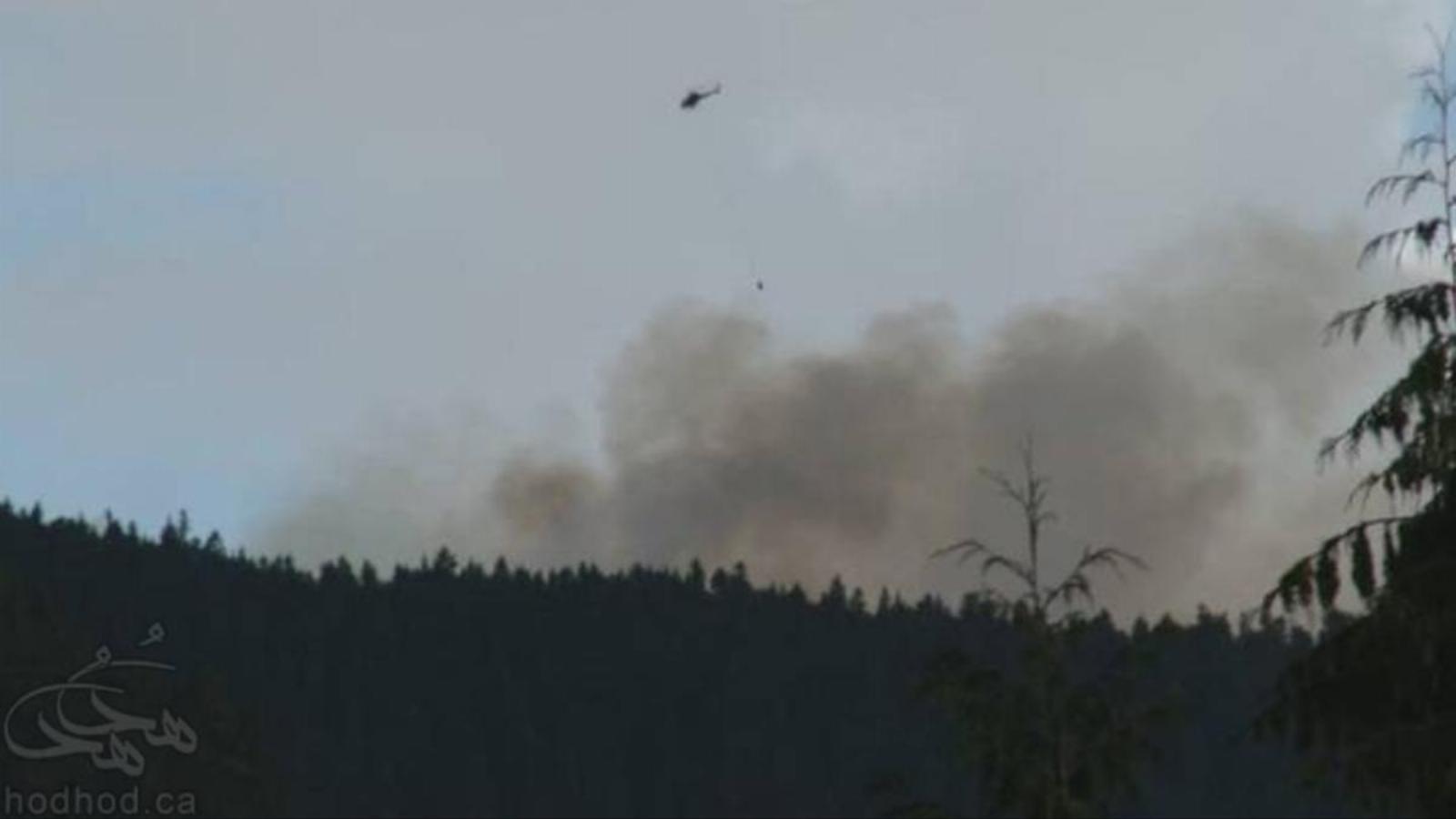آتش سوزی جدیدی در کمین جنگل های کانادا: این بار منطقه Whistler شمال ونکوور