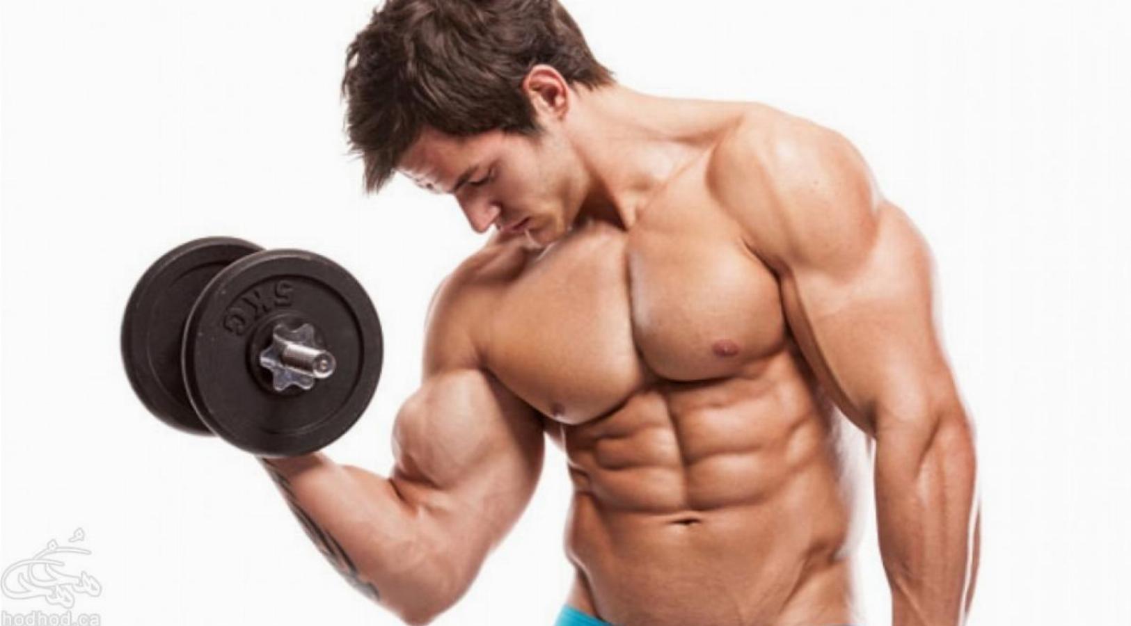 آموزش بدن سازی و تناسب اندام: آشنایی با حرکات جلو بازو