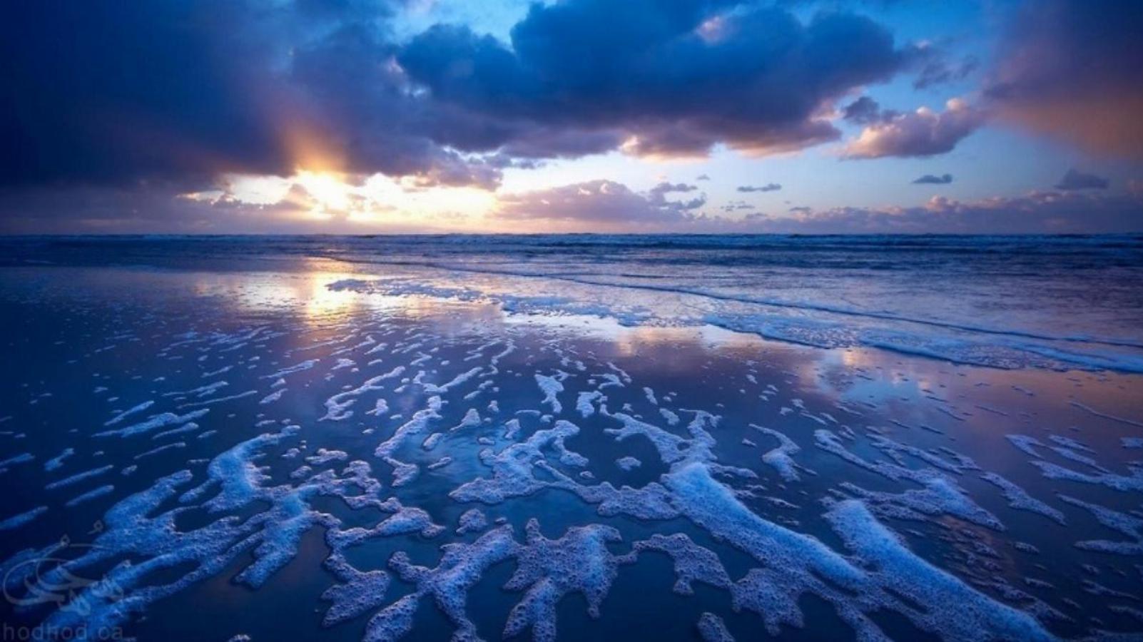 الفبای محیط زیست، اقیانوس: مخزن خون حیاتبخش زمین