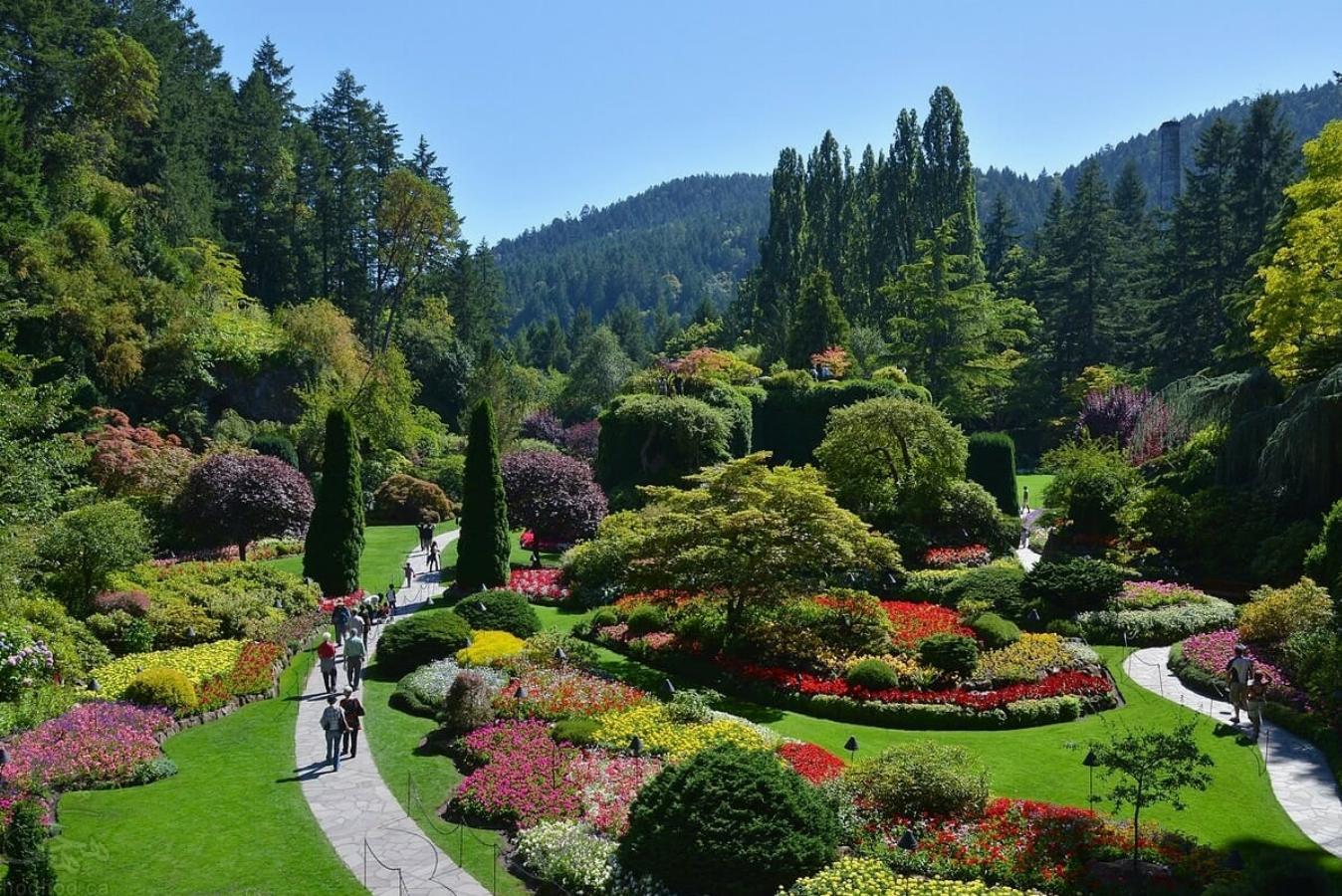 جاذبه های گردشگری کانادا: باغ های بوچارت